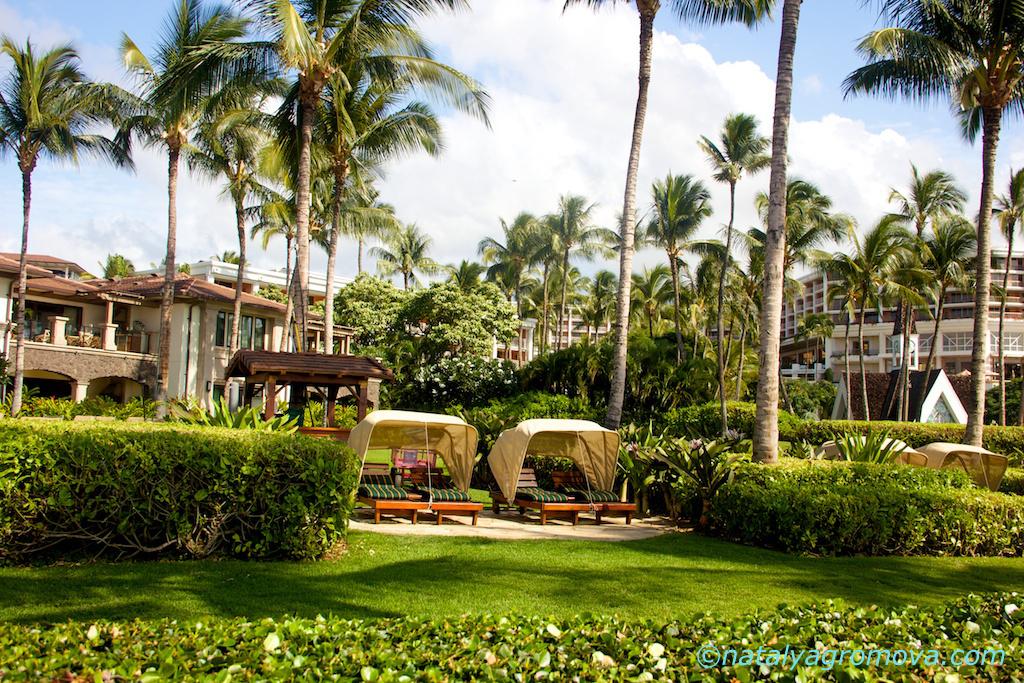 Райский остров Мауи, Гавайи https://natalyagromova.com