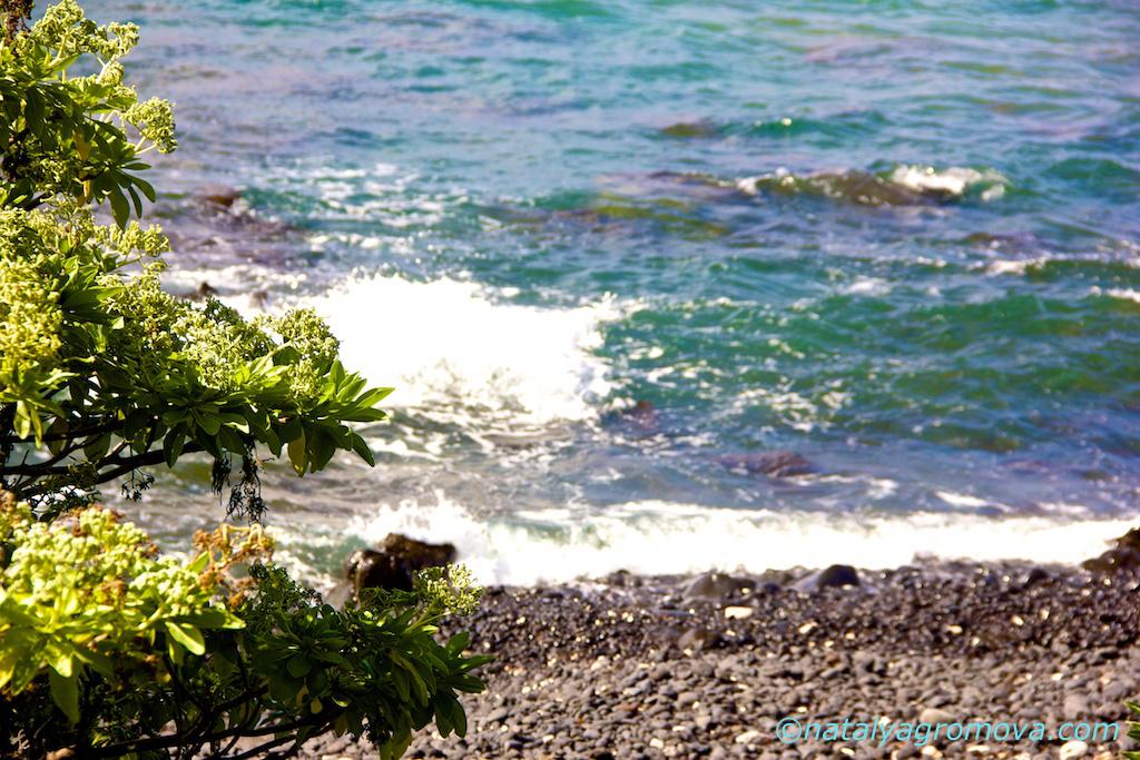 гавайские волны https://natalyagromova.com