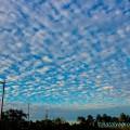 Флорида небо