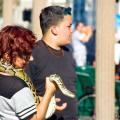 Los Angeles: люди, змеи, попугаи